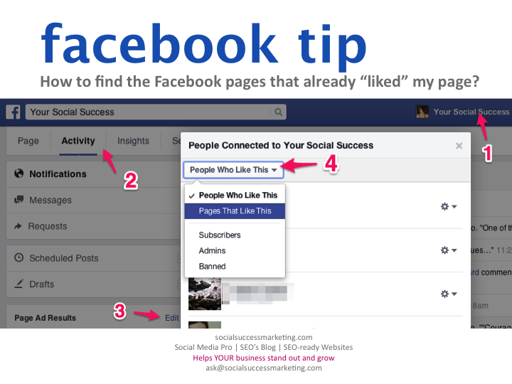 Find Pages that Liked Facebook Page